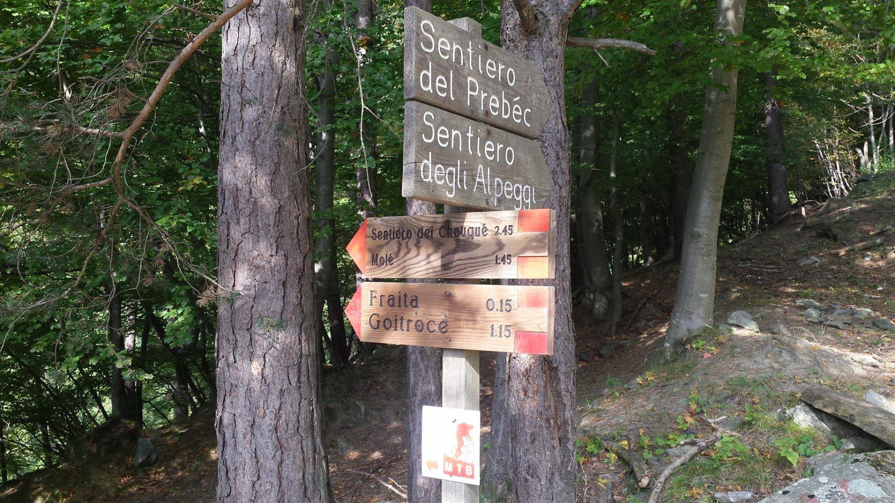 sentiero 565
