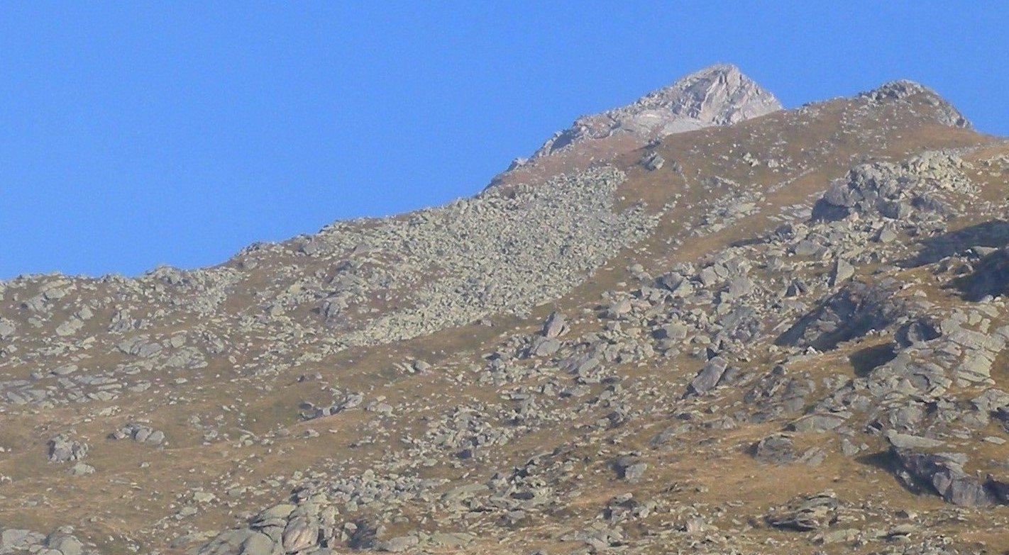 Colombo dal Alpe Crest