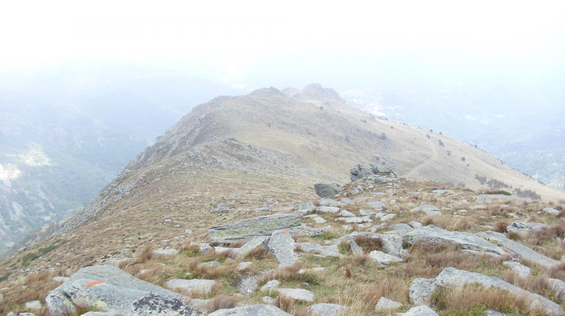 La Costa Valcaira.