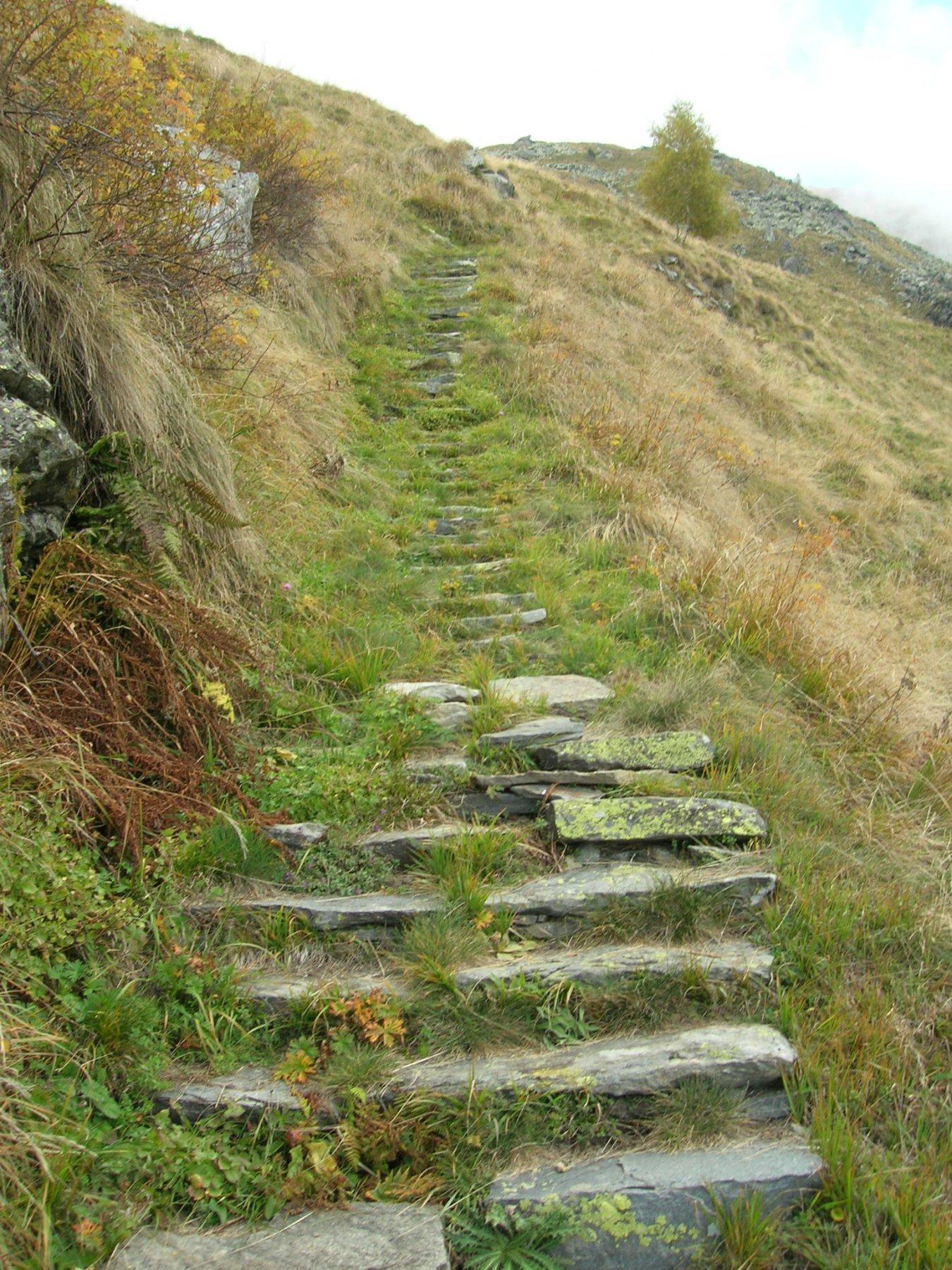 prima scalinata