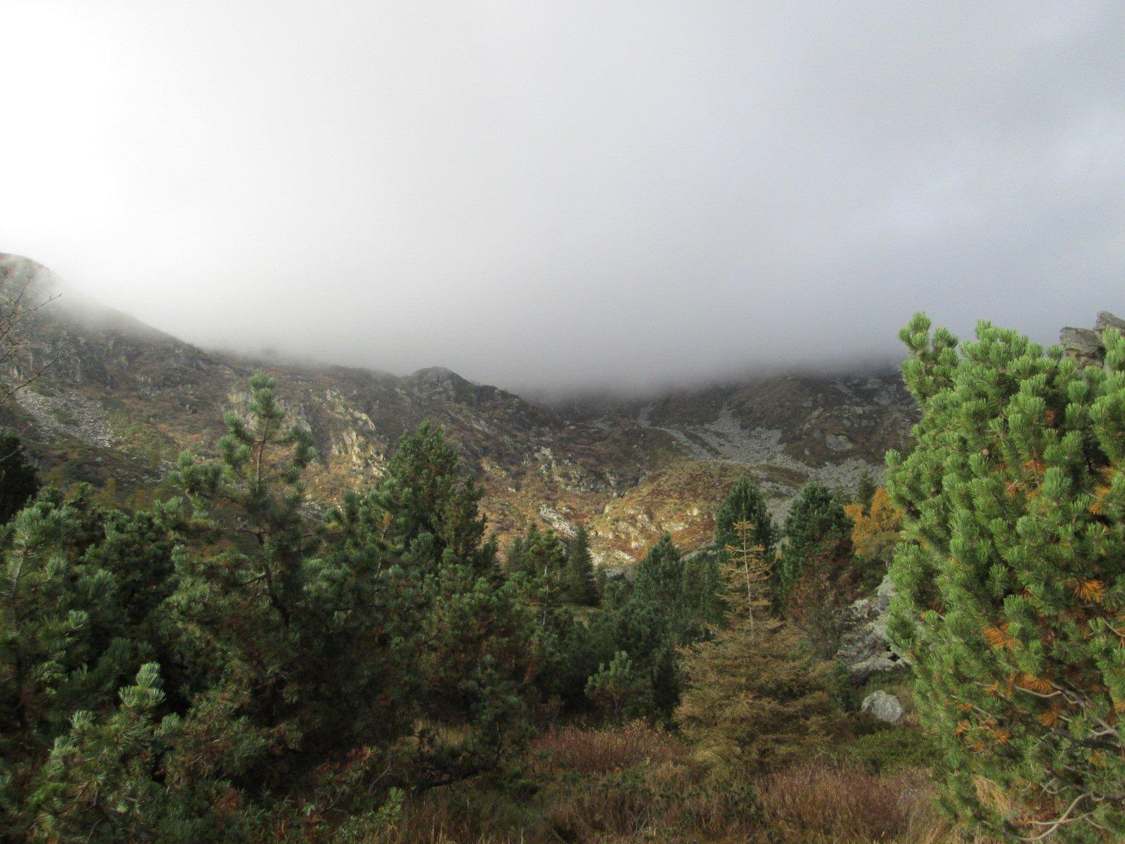 la nebbia incombe