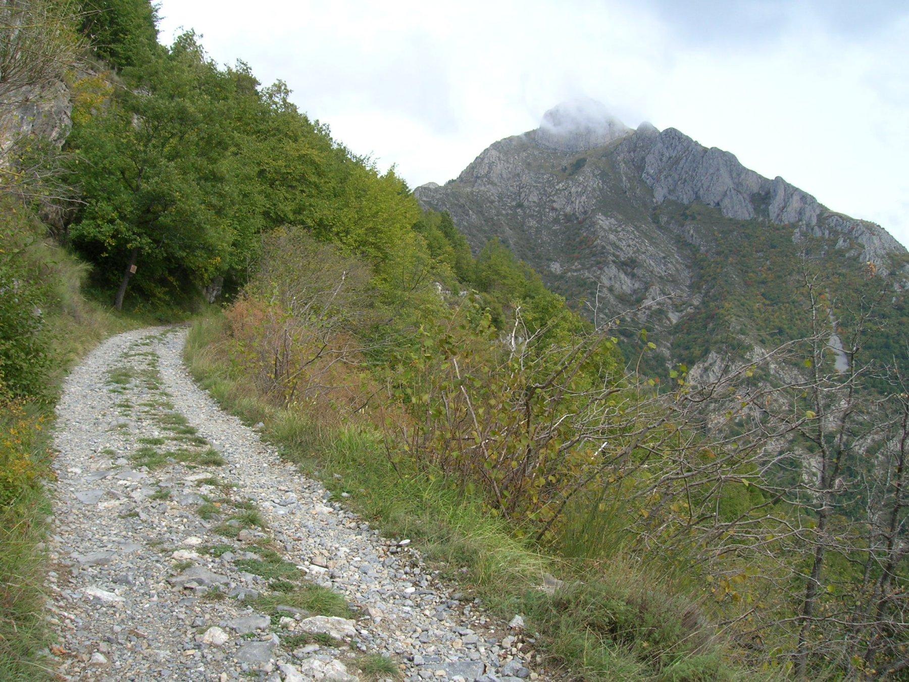 la bella strada che sale al Col du Corbeau