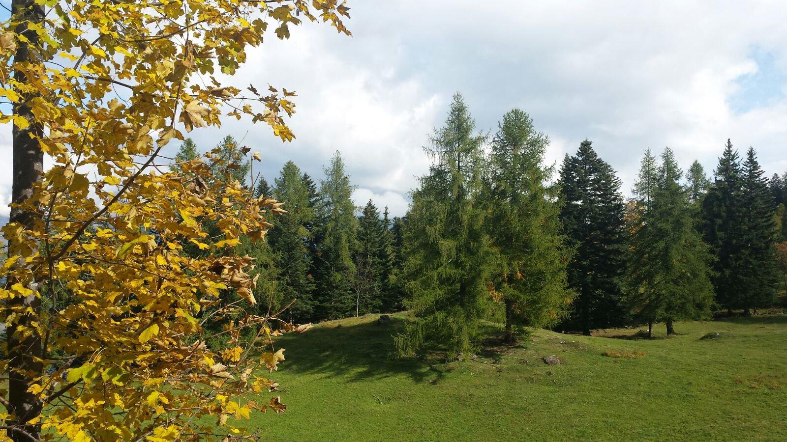 L'autunno è alle porte ........