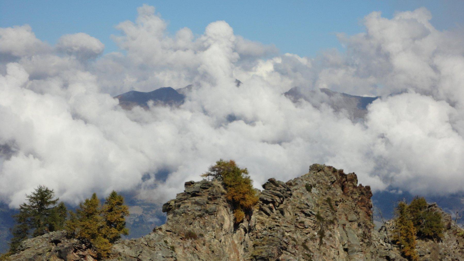 Plana (Becca) da Chevrere 2015-10-10