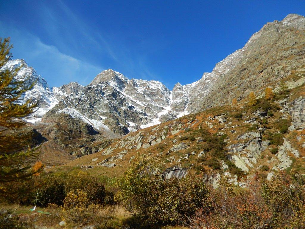 In prossimità del bivio da dove si riallaccia il sentiero che attraversa il ghiacciaio del Belvedere