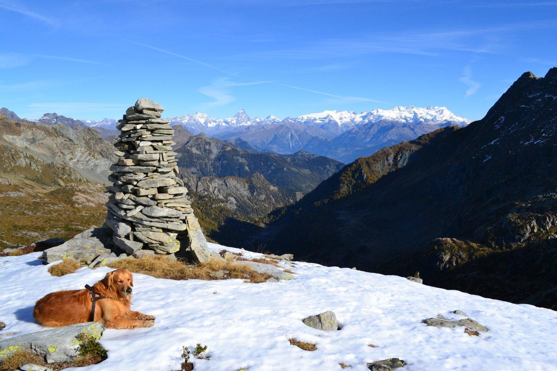 panorama su Rosa e Cervino dall'ometto a quota 2400 m