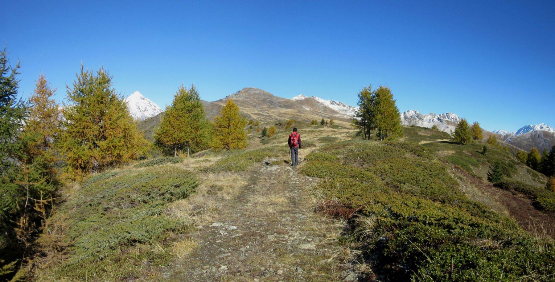 Il crinale per raggiungere la Punta Fetita