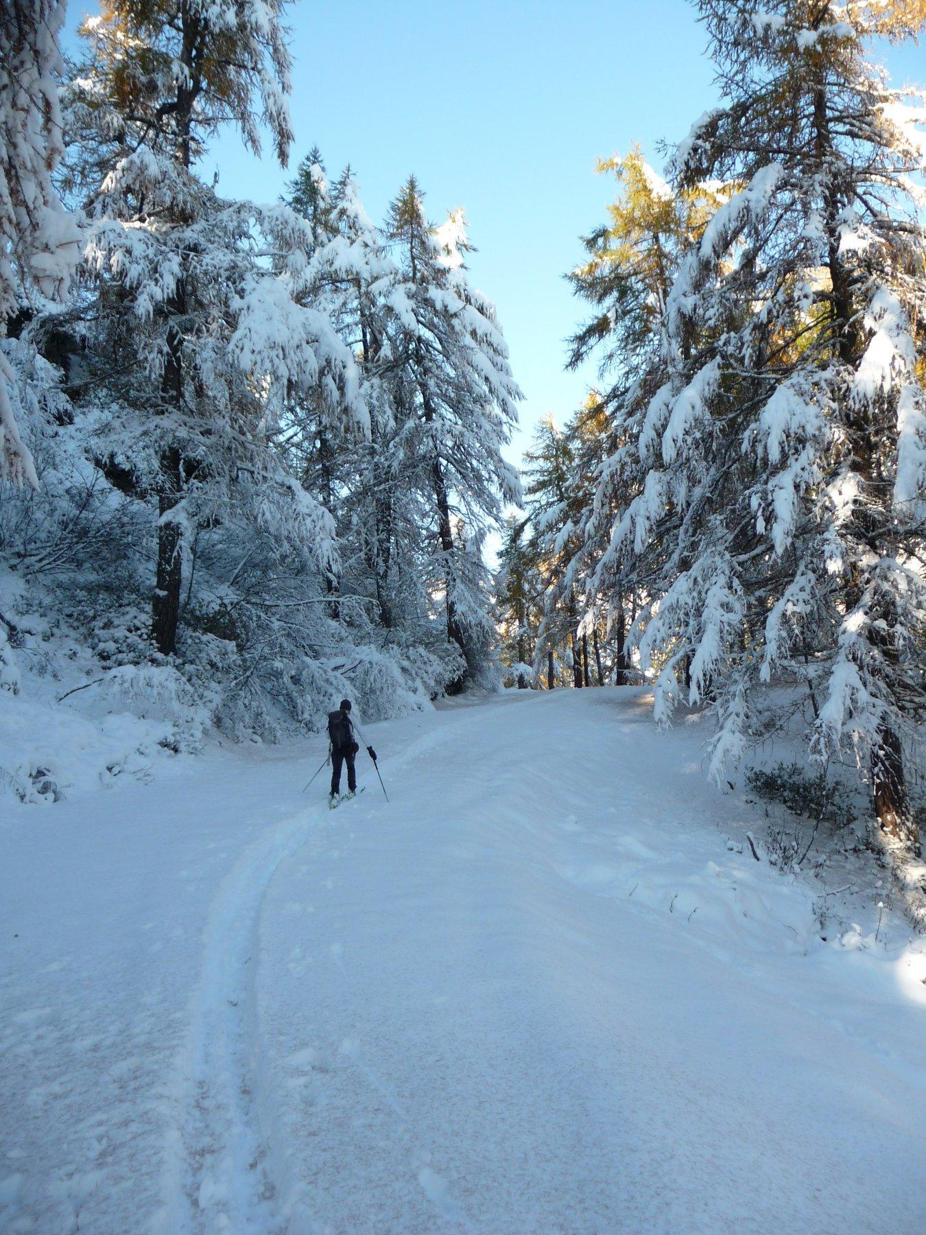 paesaggi invernali...