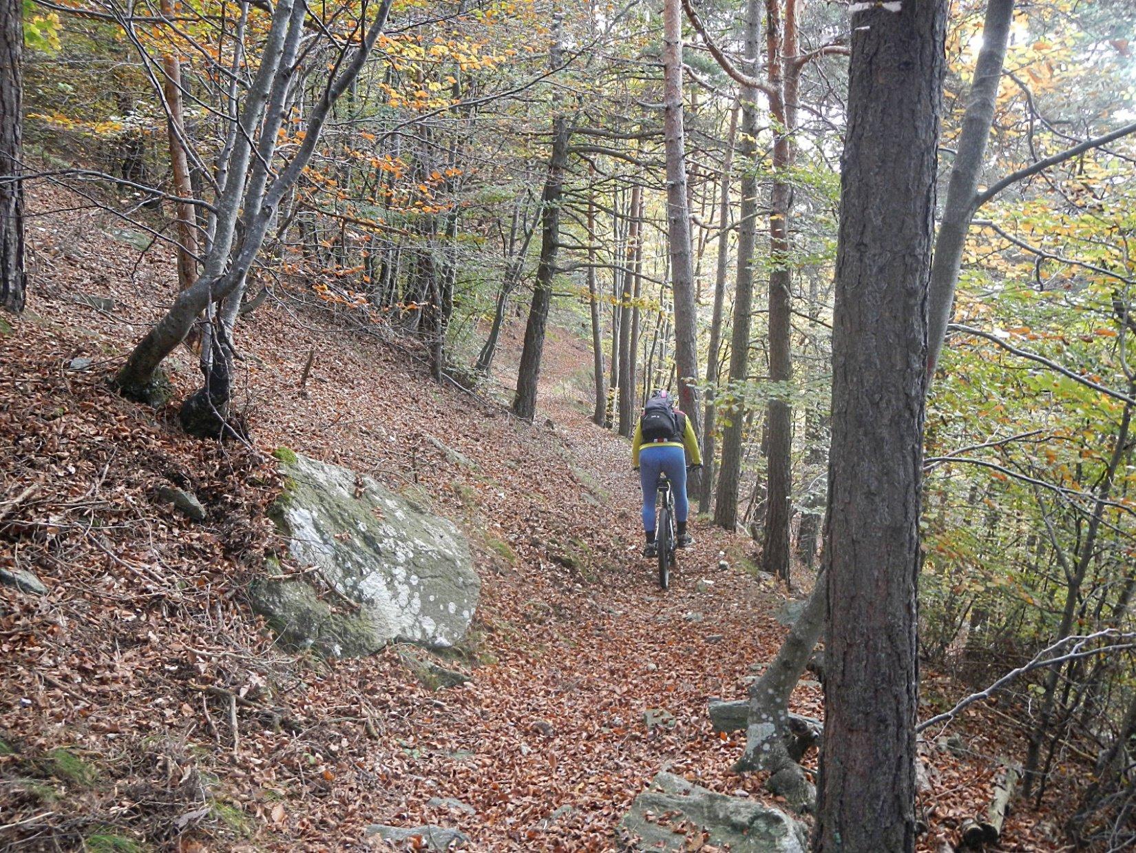 il Sentiero della Resistenza che permette di raggiungere Maffiotto