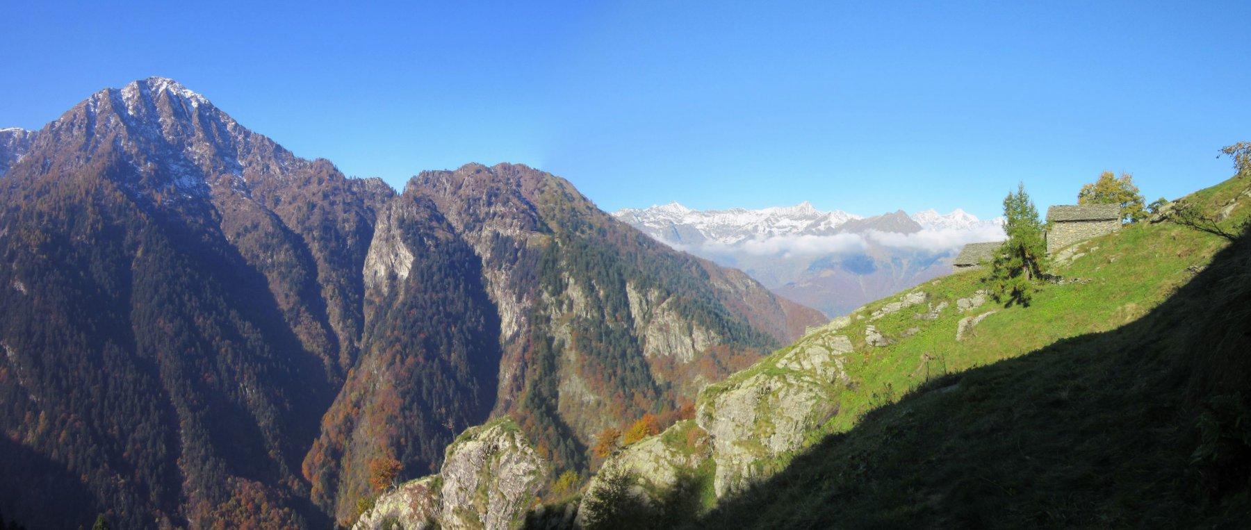 Panorama dall'alpe Camino