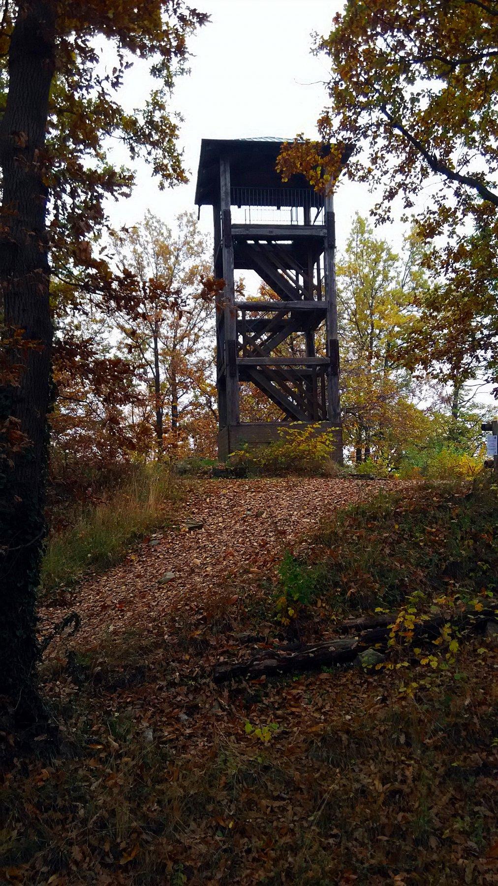 Aggiornamento: In data 31-10 hanno chiuso la torre.