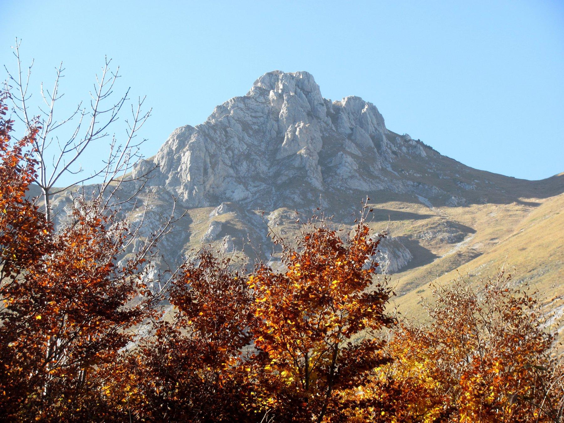 autunno e Bec Matlas