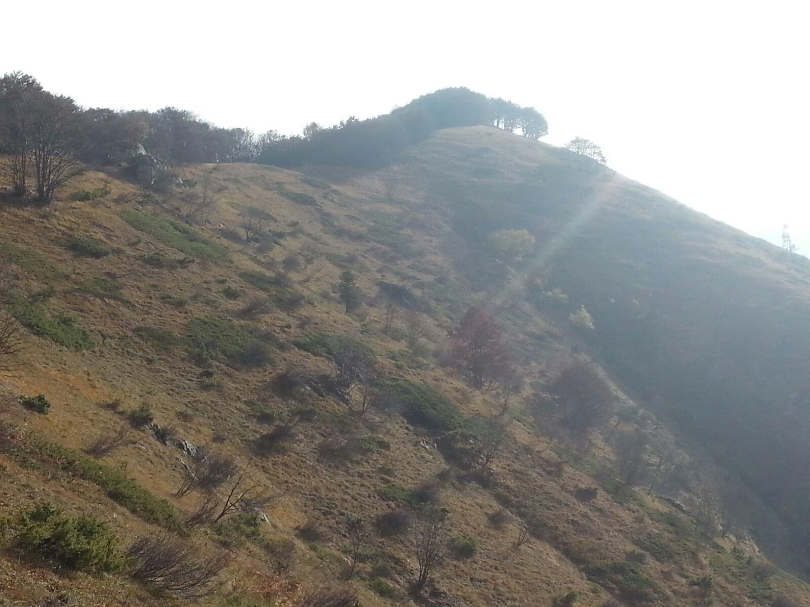 vista della cima dal Passo di Costabella