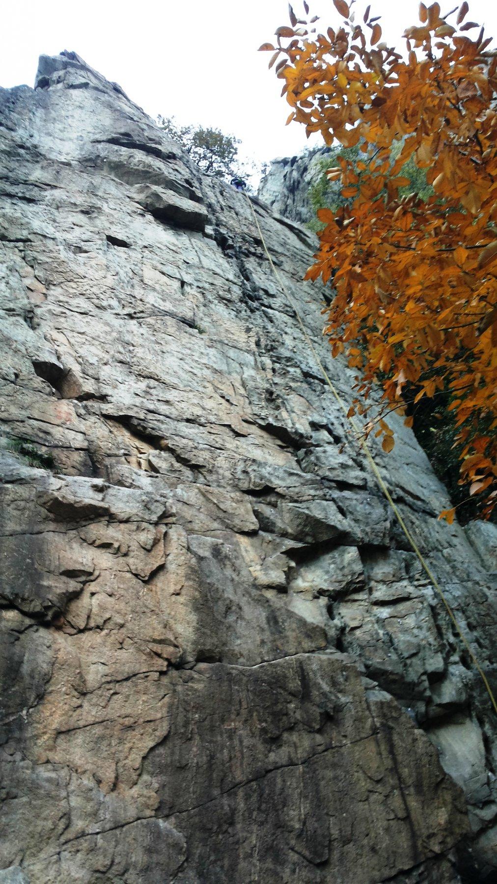 Topo Pazzo, primo tiro con i colori dell'autunno
