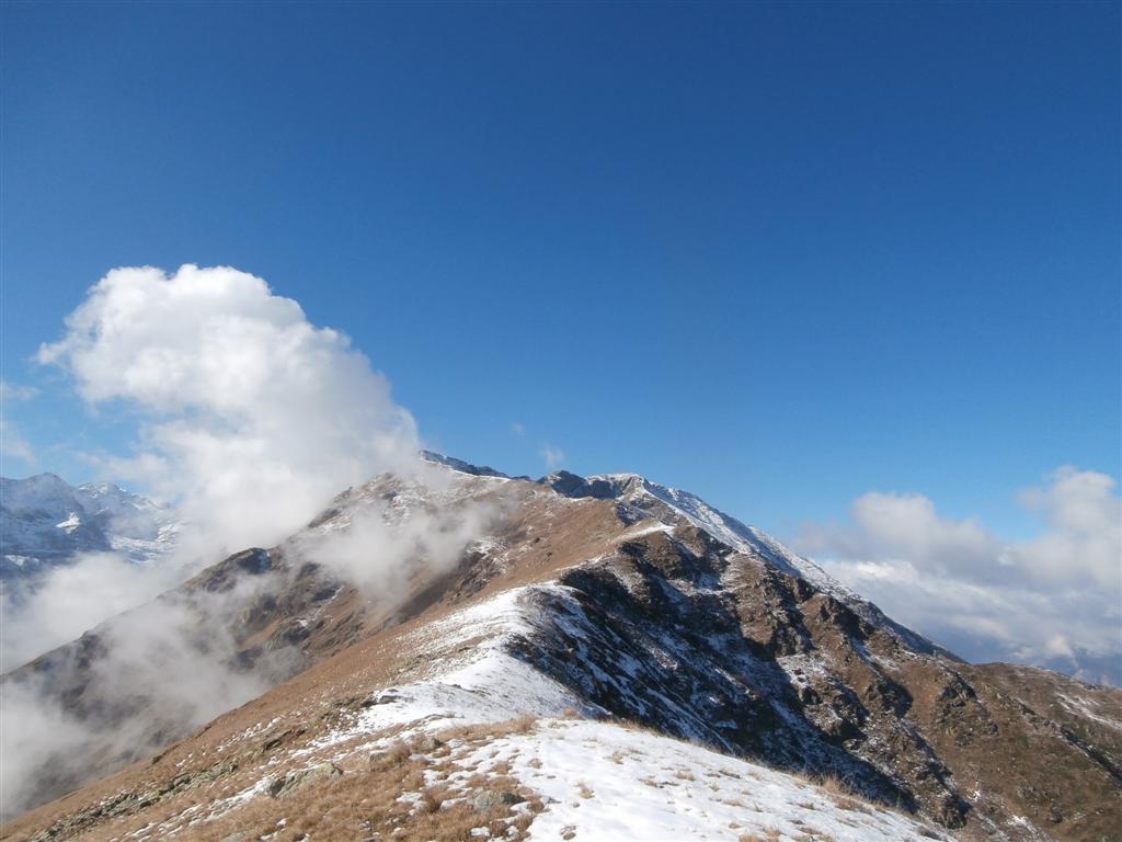 Merqua (Monte) da Sant'Anna 2015-10-31
