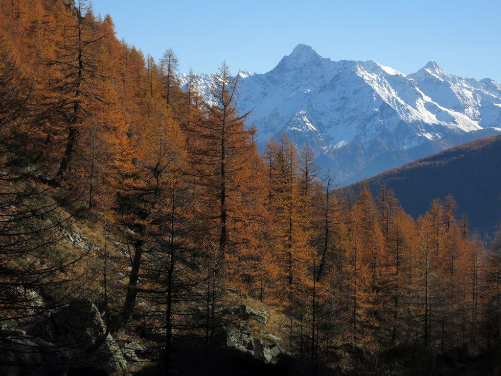 Paglietta (Monte) da Eternon, anello 2015-10-31