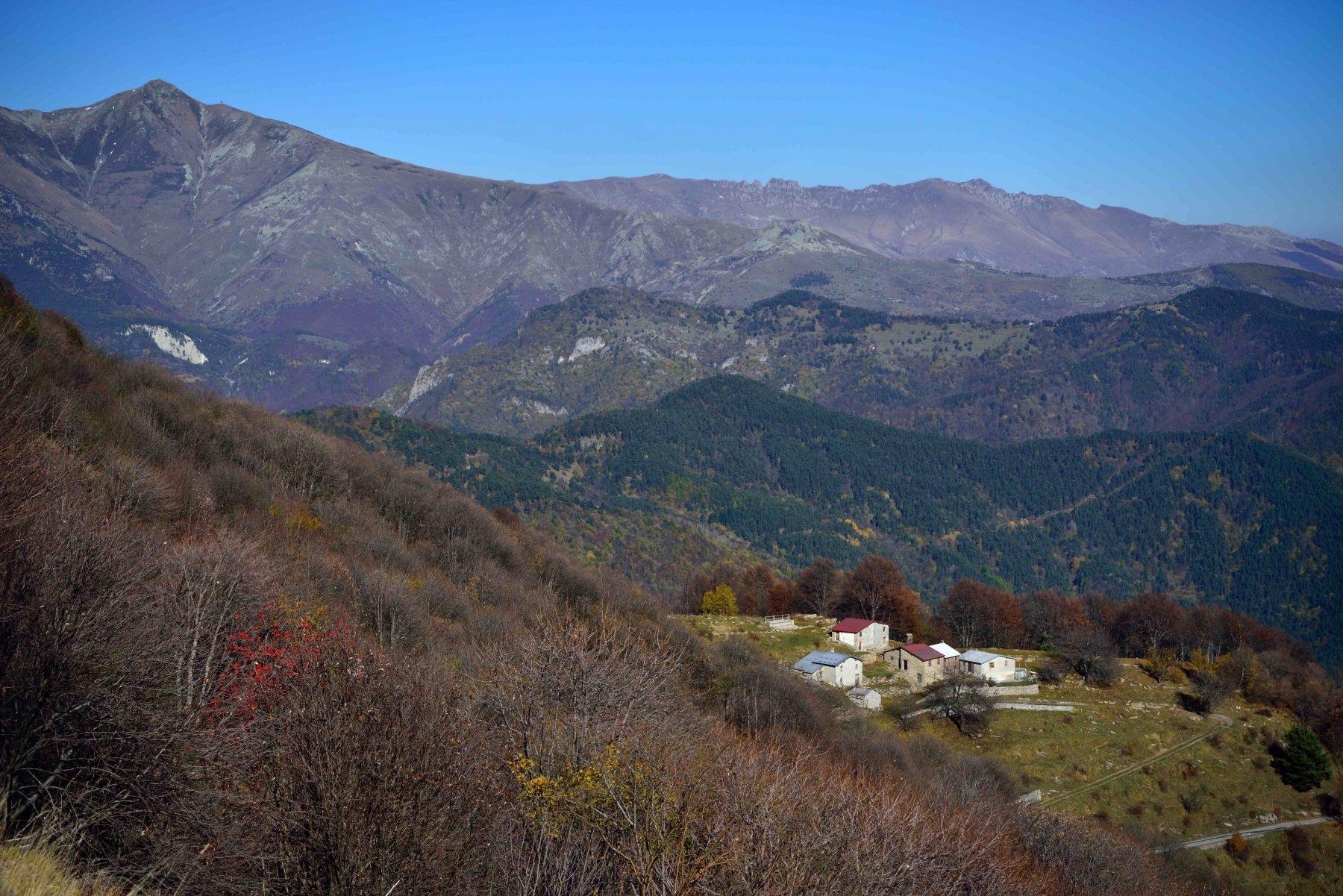 Frontè (Monte) dal Colle San Bernardo di Mendatica e Cima Garlenda 2015-11-01