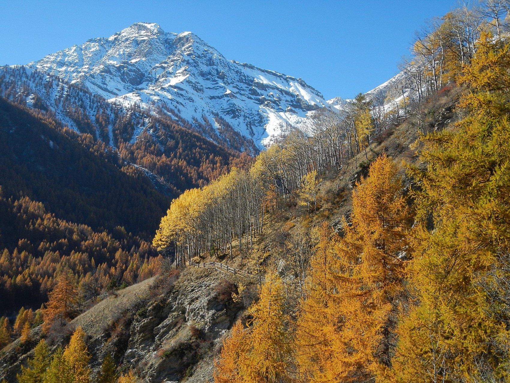 la staccionata di protezione nel tratto esposto e Monte Chaberton
