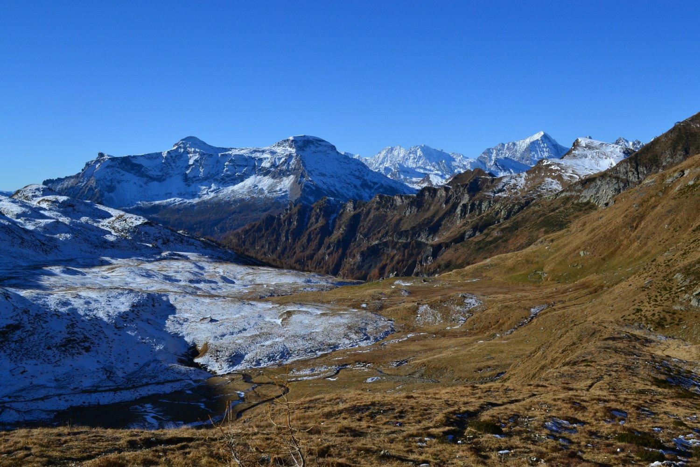 la conca prativa dell'Alpe Pojala