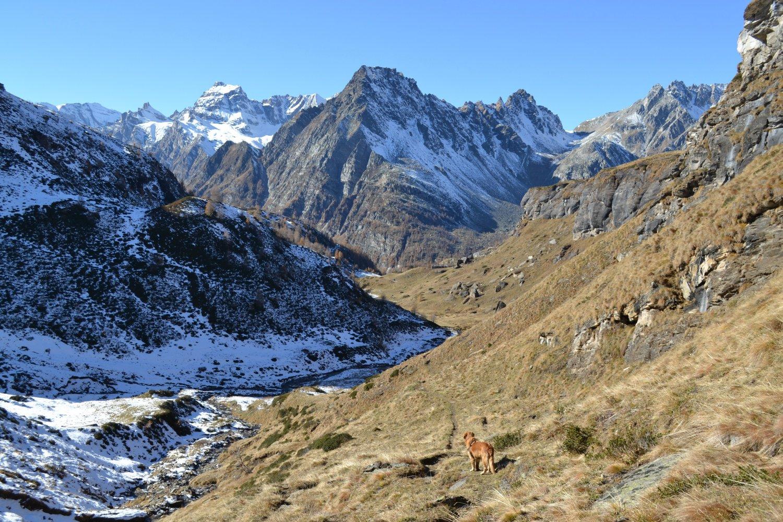 in discesa verso l'Alpe della Valle