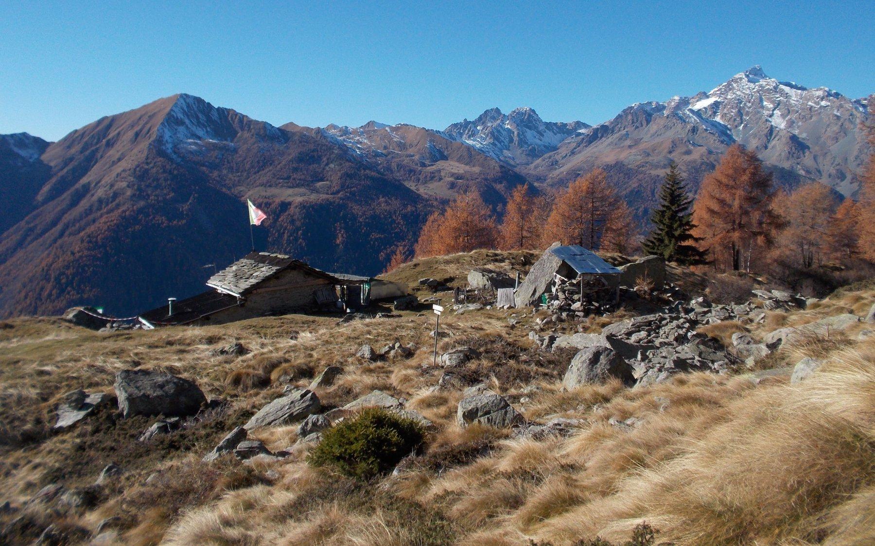 Alpe Castellaccio