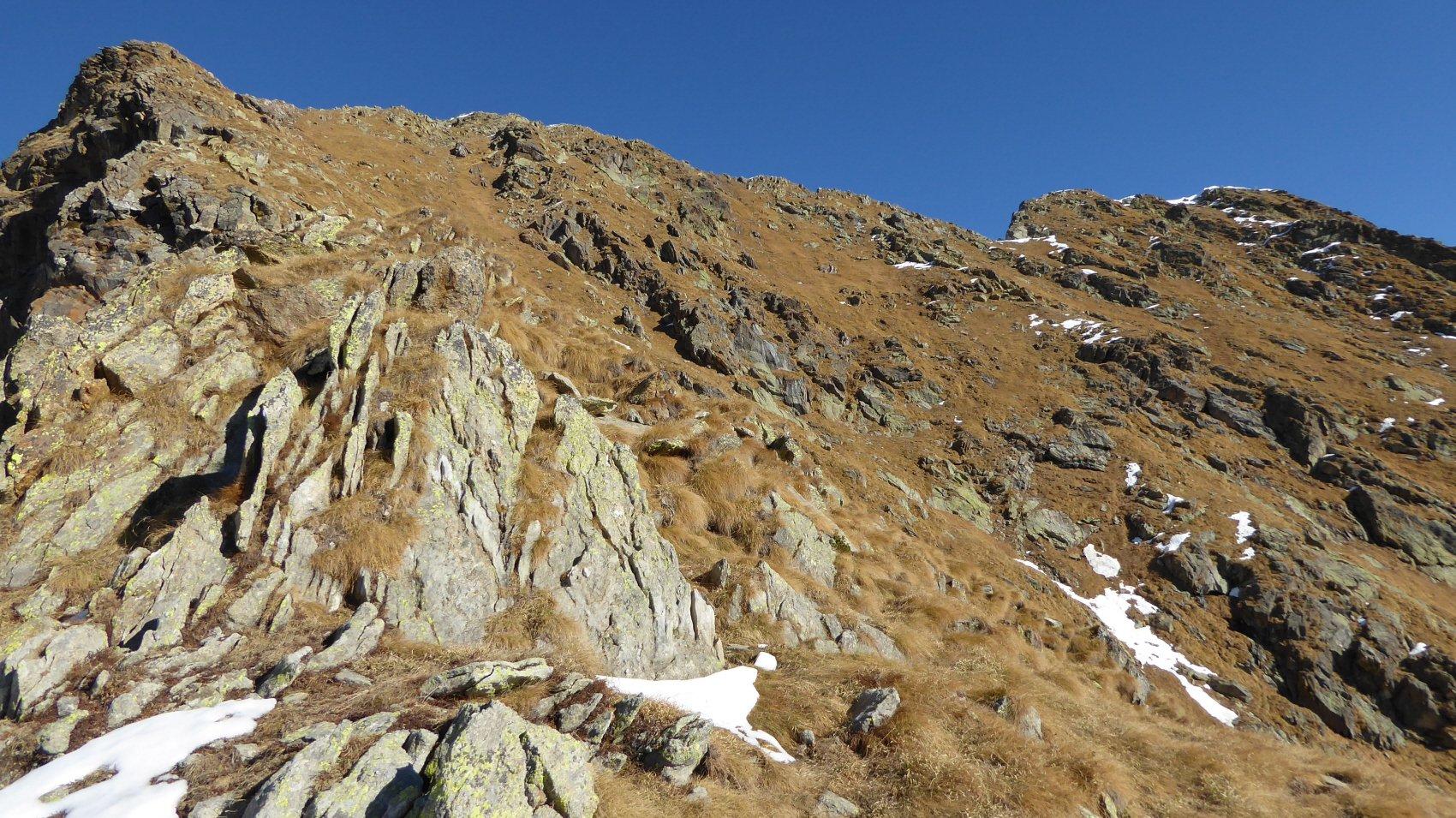 Giavino (Monte) da Berchiotto per il Vallone di Codebiollo 2015-11-07