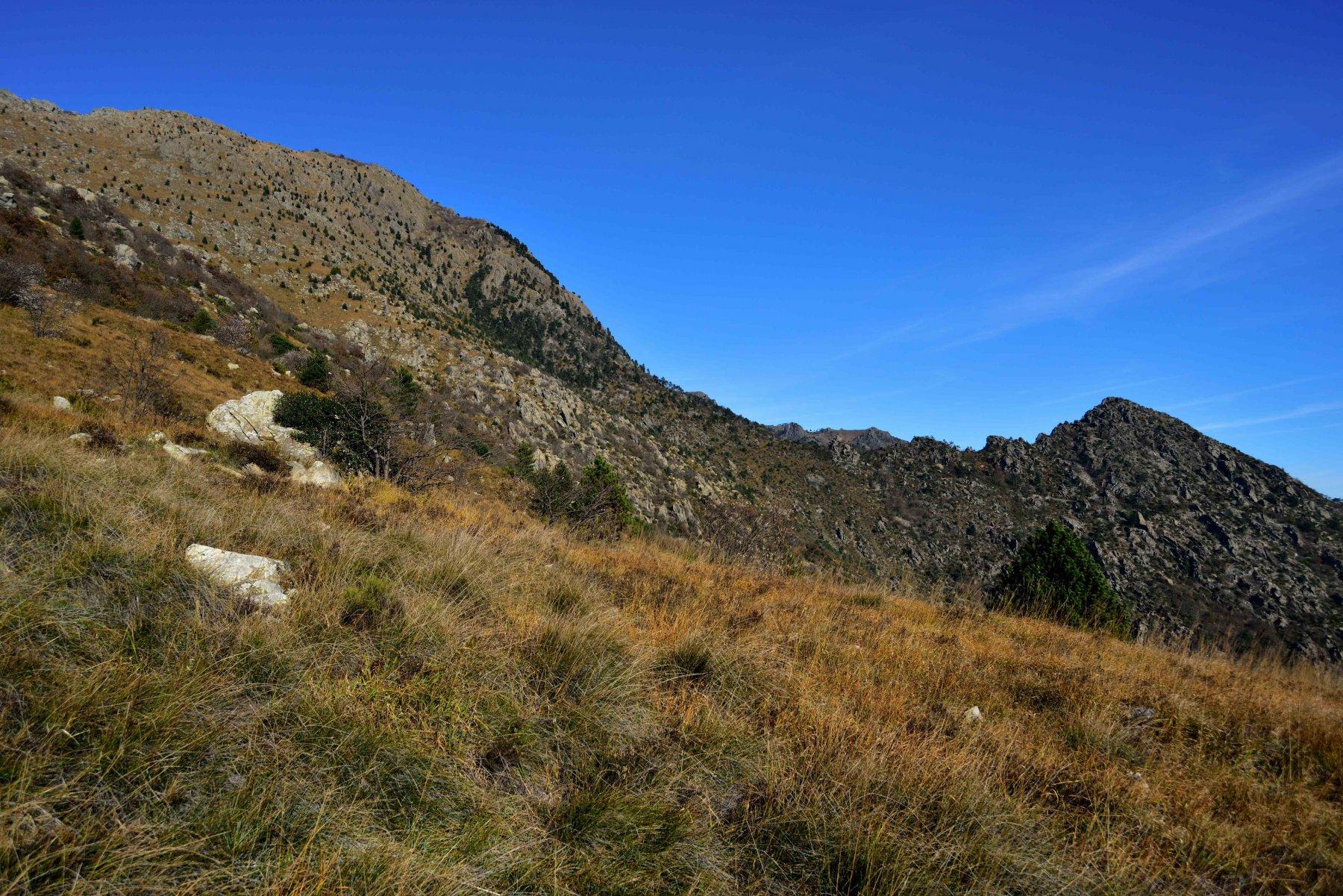 Rama (Monte) da Sciarborasca, Sentiero Direttissima 2015-11-08