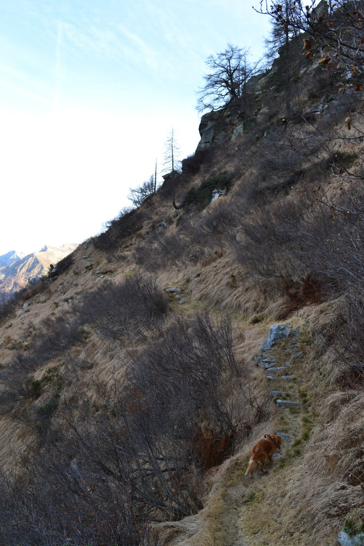 sul sentiero che attraversa il versante ovest della montagna
