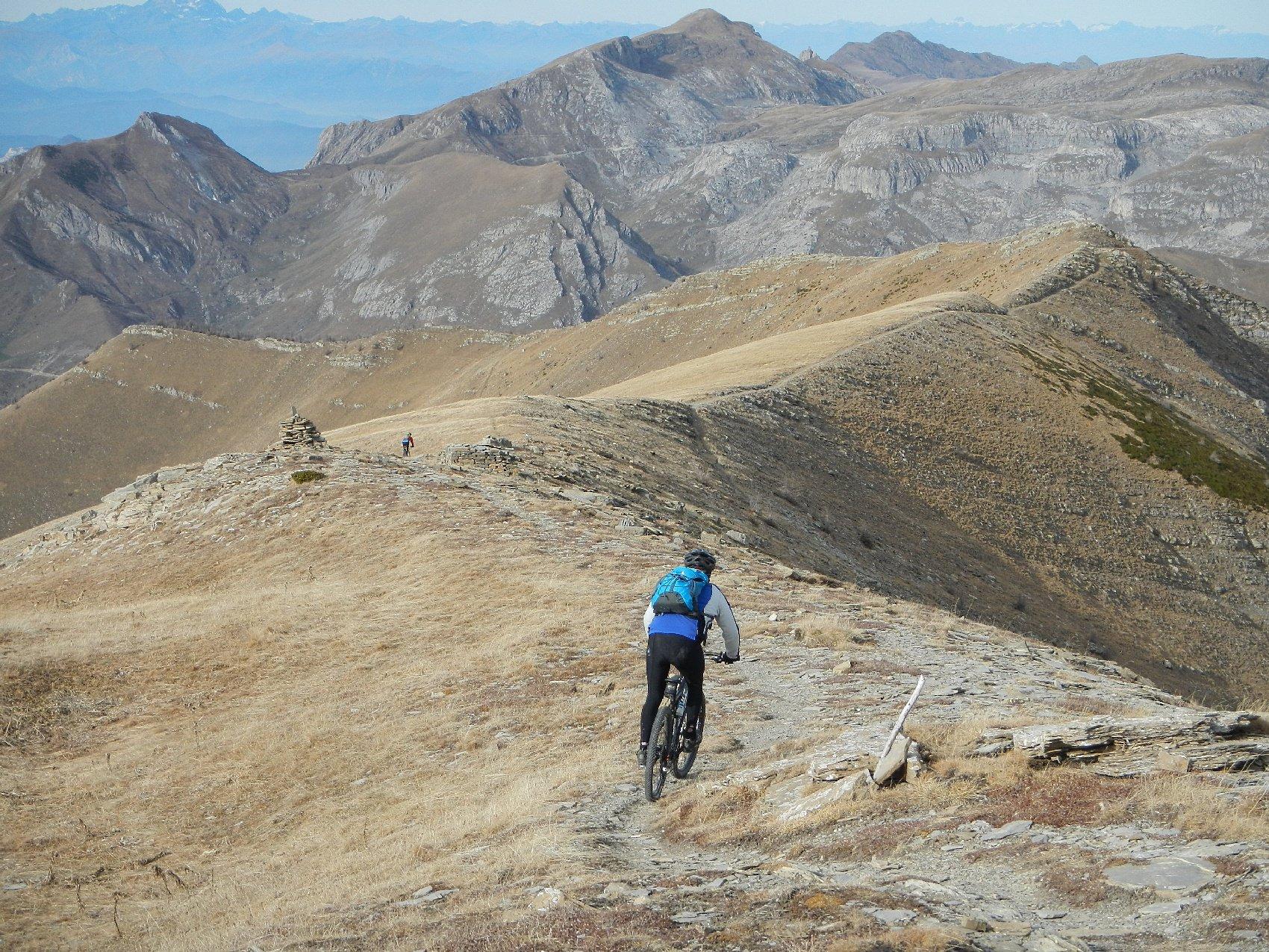 in discesa dal Monte Bertrand verso il sentiero principale