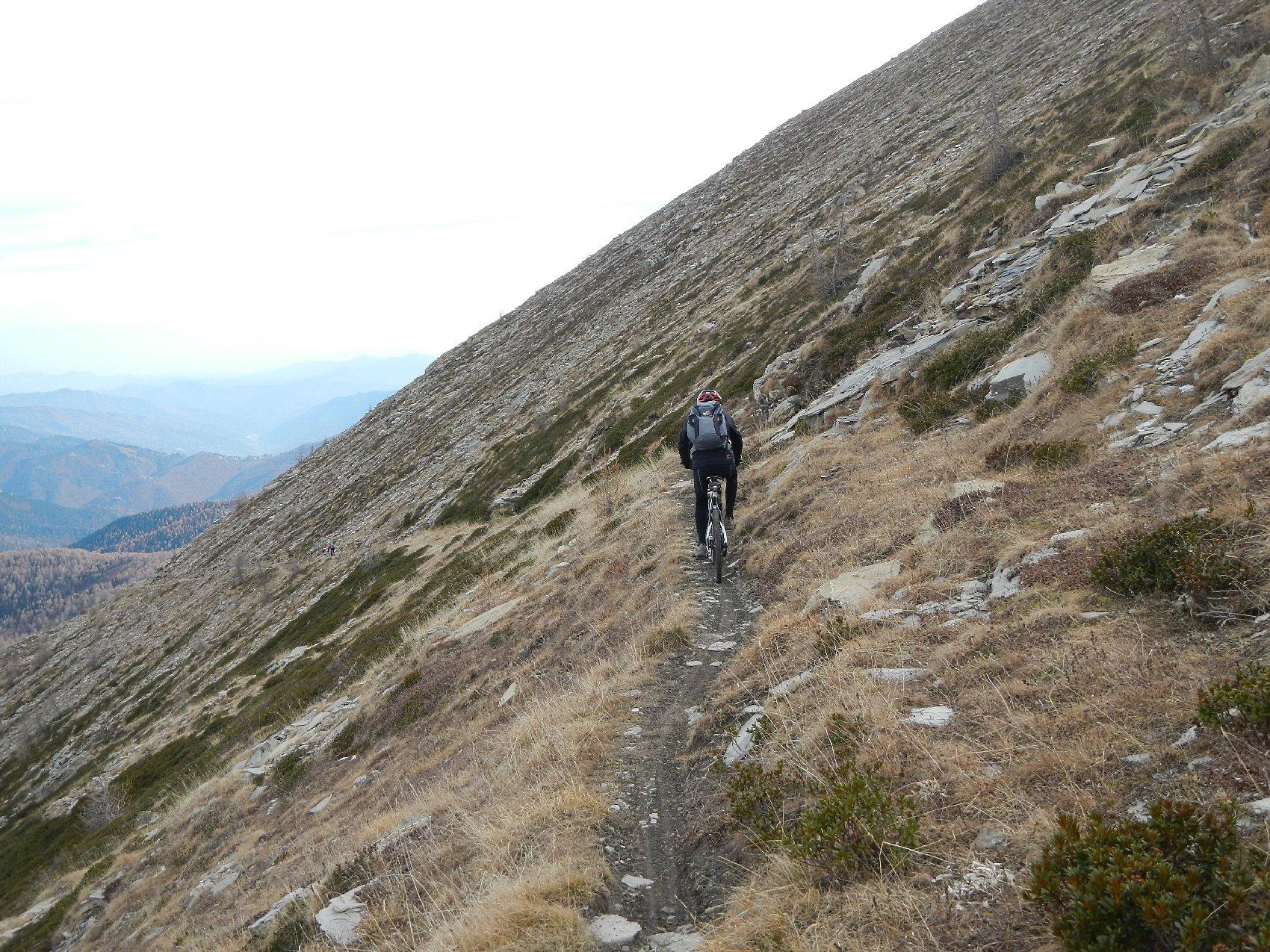 il sentiero che taglia il ripido pendio nord del Monte Bertrand