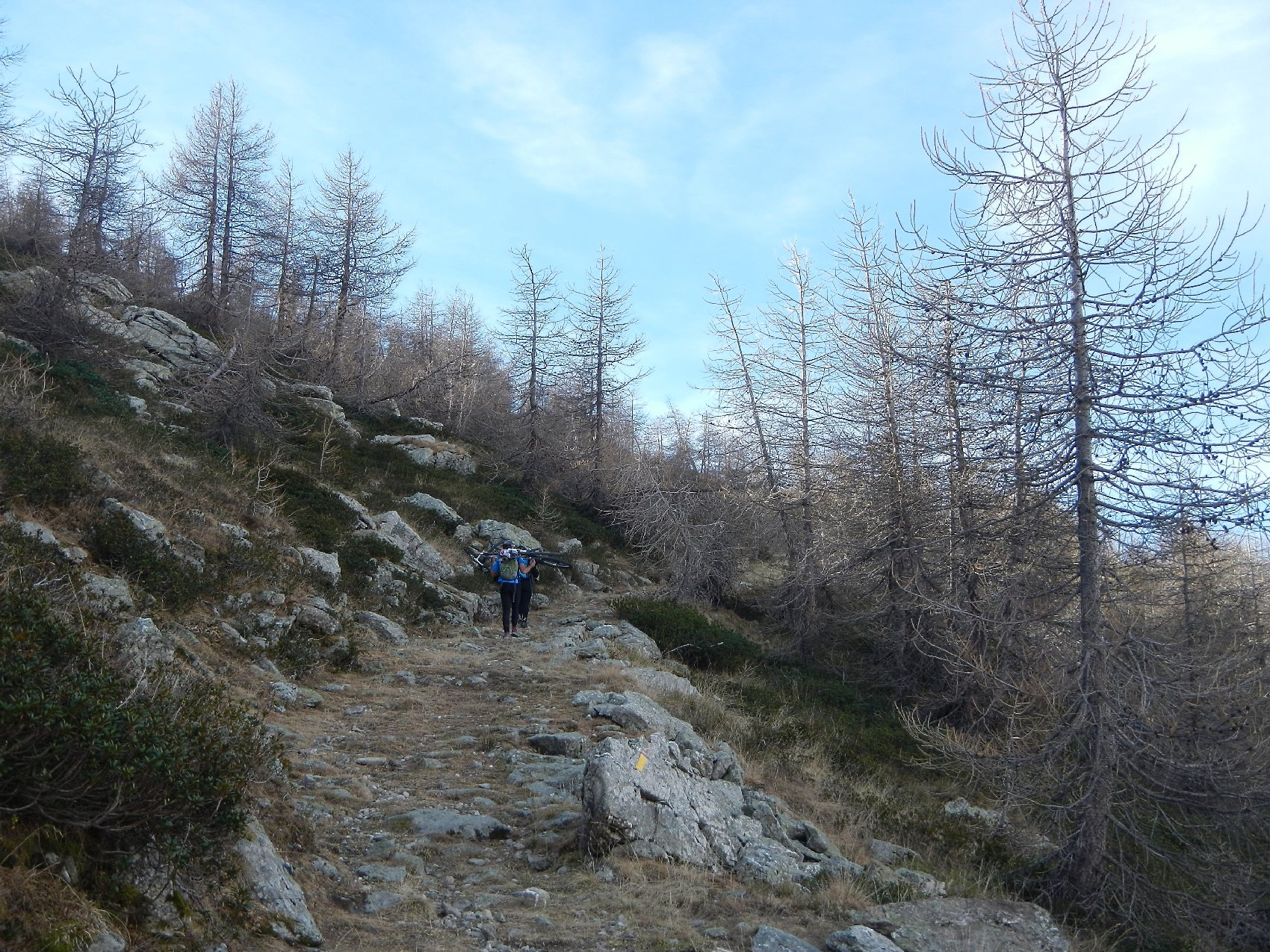 tratto sostenuto verso la dorsale nord ovest del Monte Bertrand