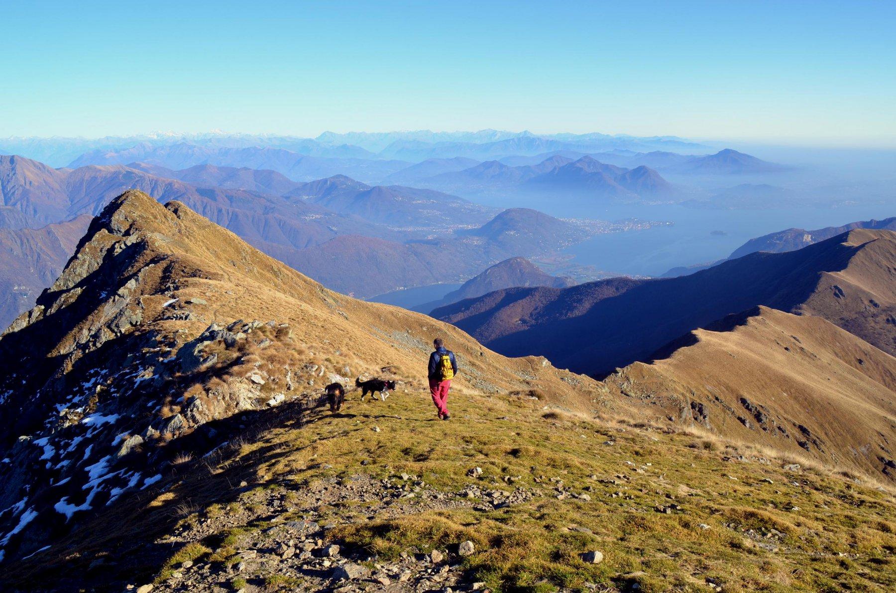 Massone (Monte) dall'Alpe Cortevecchio 2015-11-18