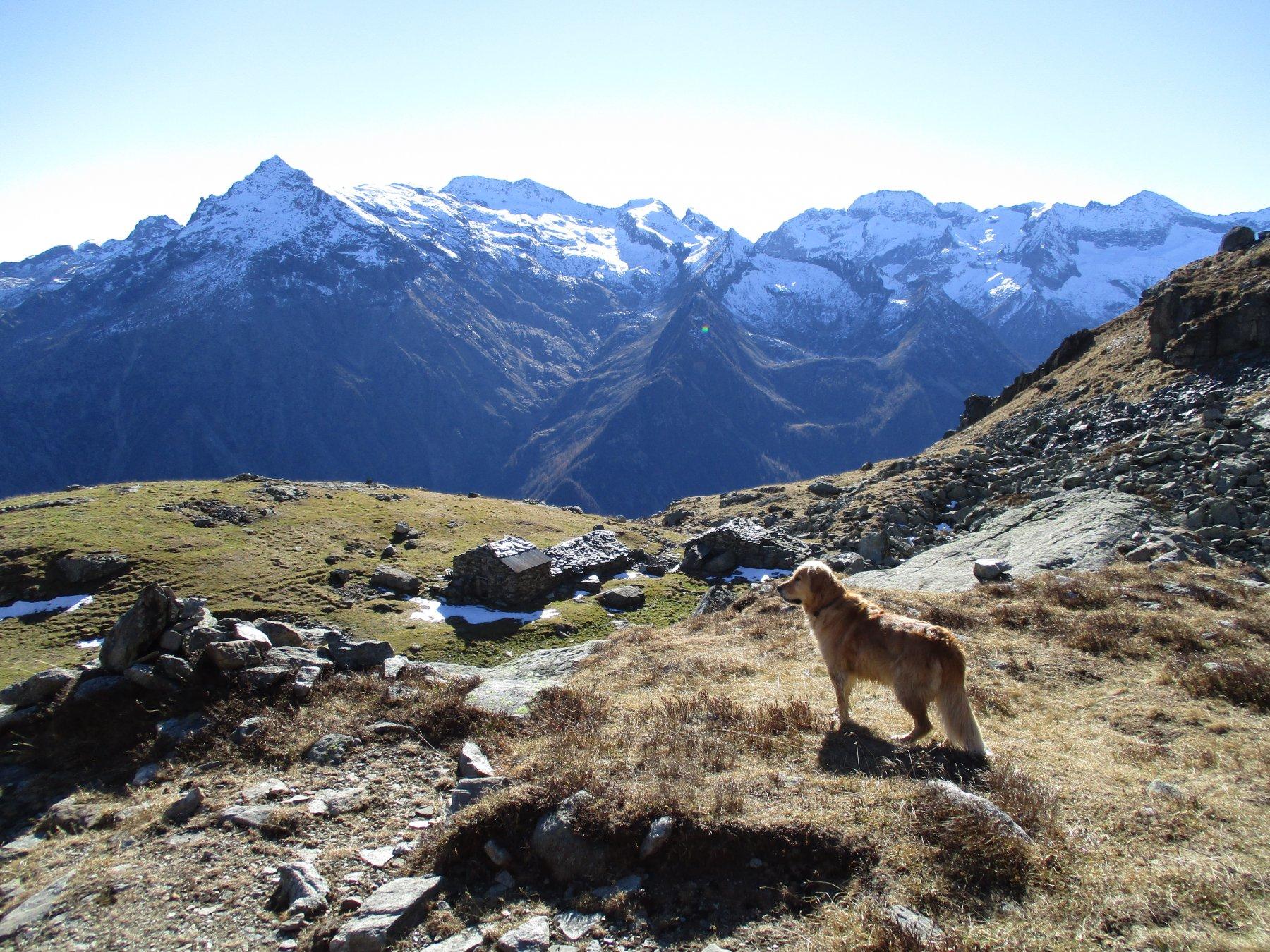 Alpe Pian del Lago