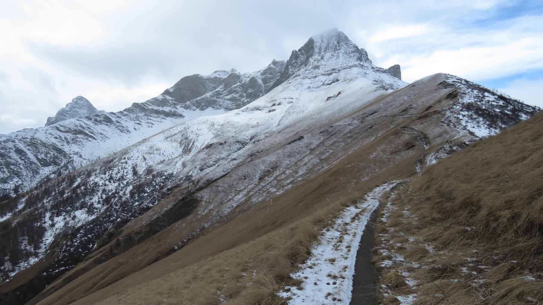 ultimo tratto prima di raggiungere il Colle della Bicocca (21-11-2015)