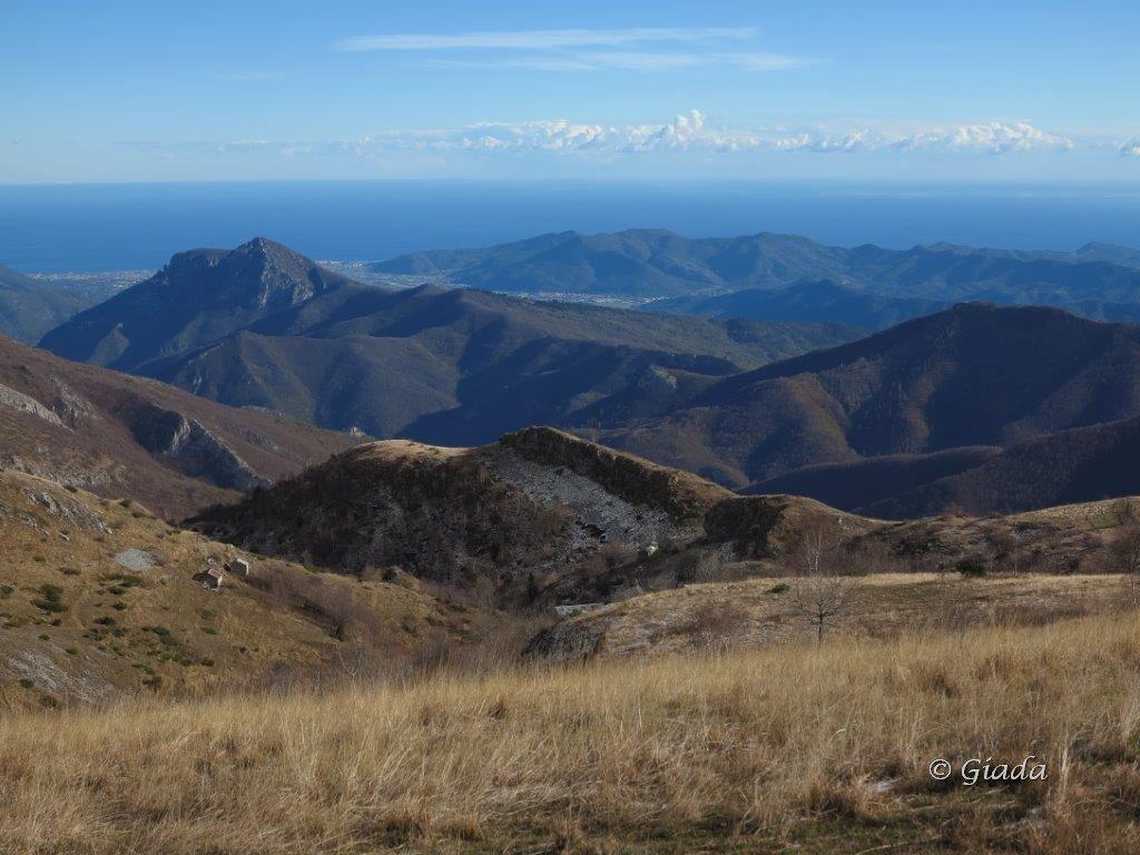 Armetta (Monte) dal Colle di Caprauna, anello per il Monte della Guardia 2015-11-22