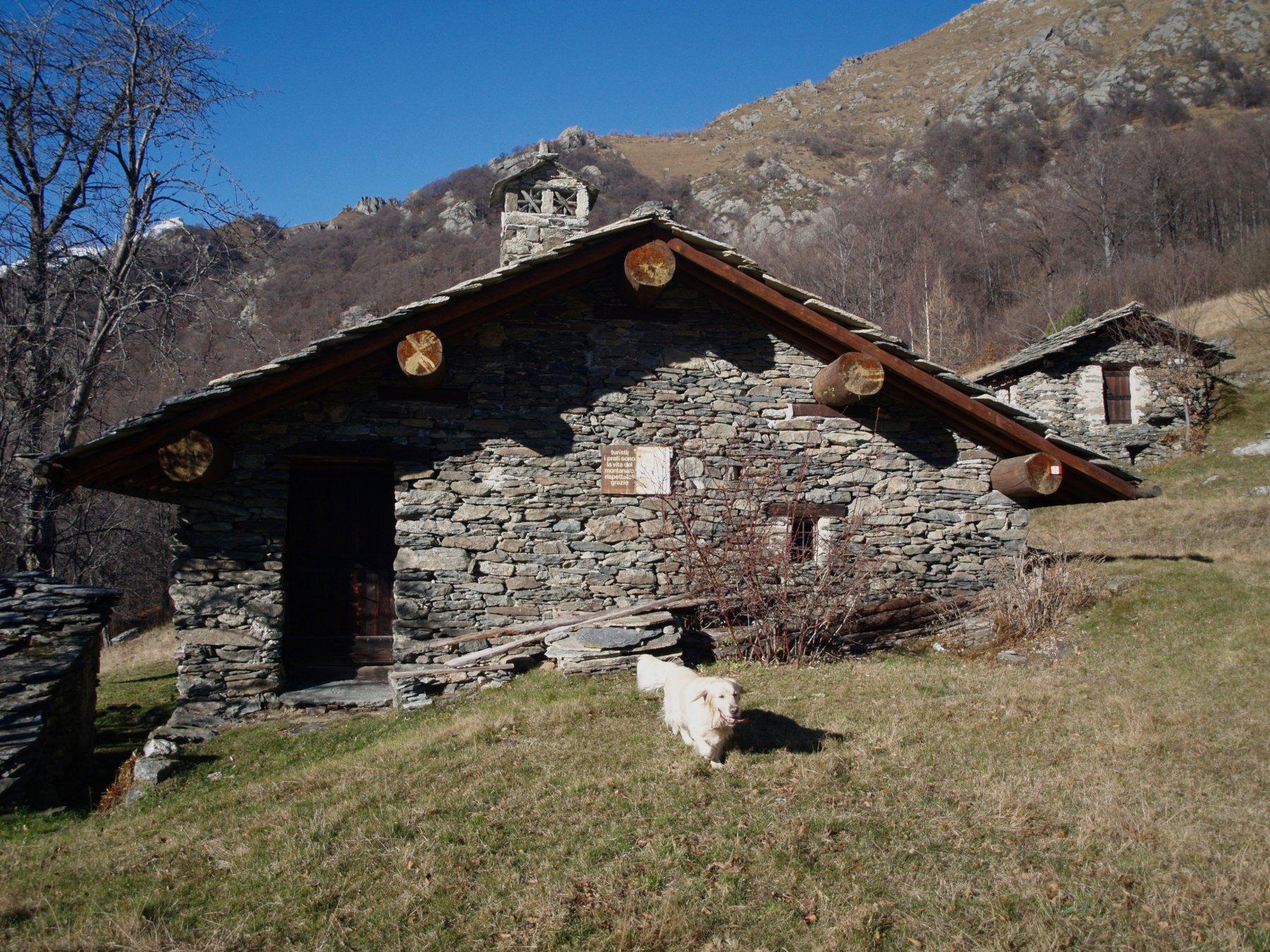 Attia (Col d') da Cresto, anello 2015-11-22