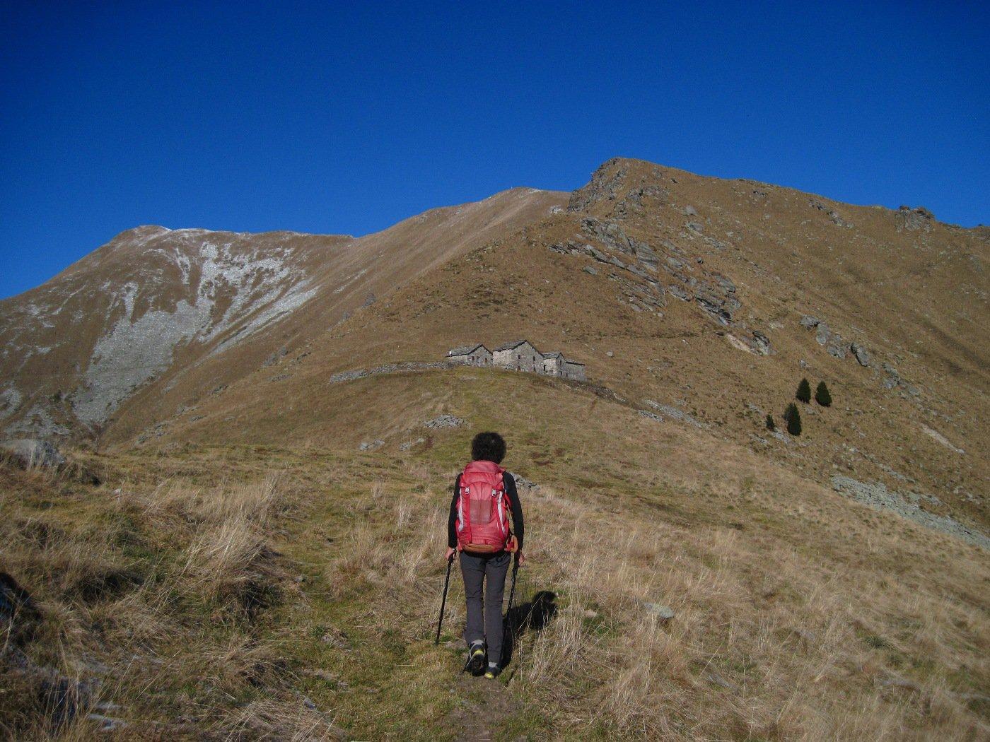 All'Alpe Frigerola