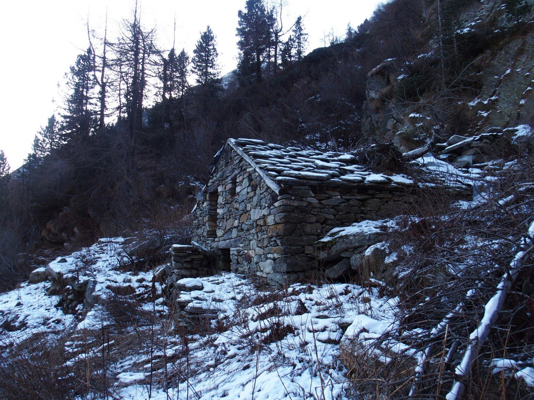 Alpe Forca 1837 m