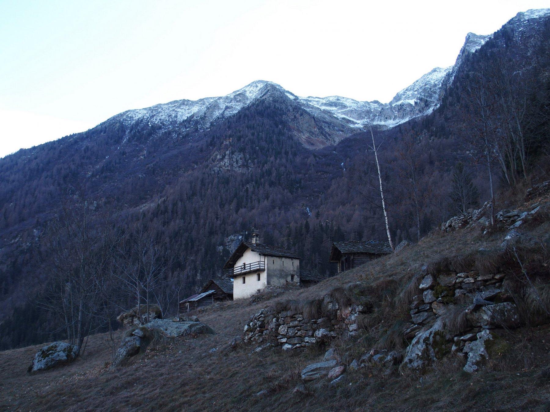 Alpe Ronc 1440 m