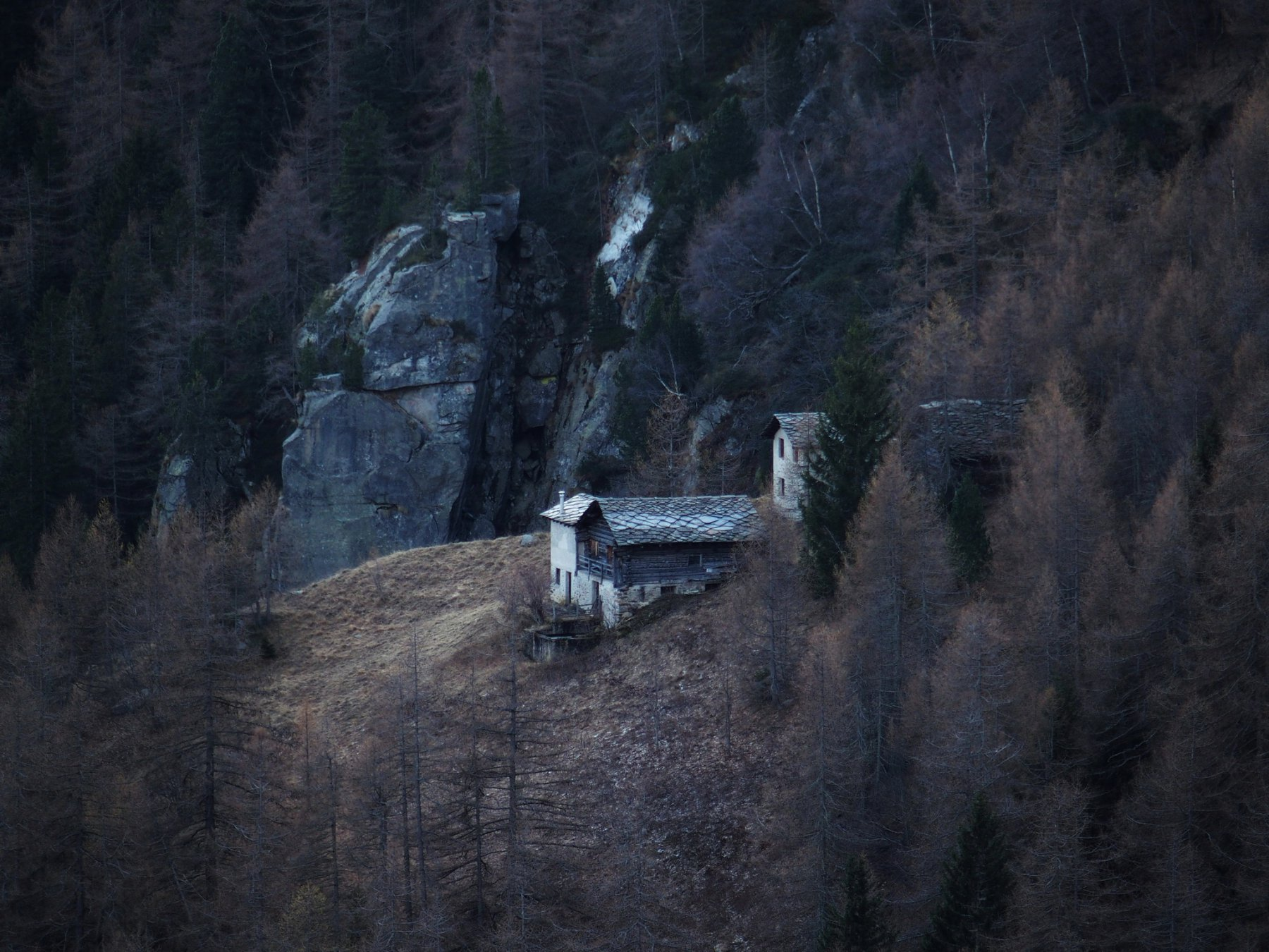 La sperdutissima Alpe Mittelkrejz