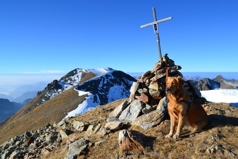 in vetta alla Cima di Venina (2624 m), con dietro il Masoni