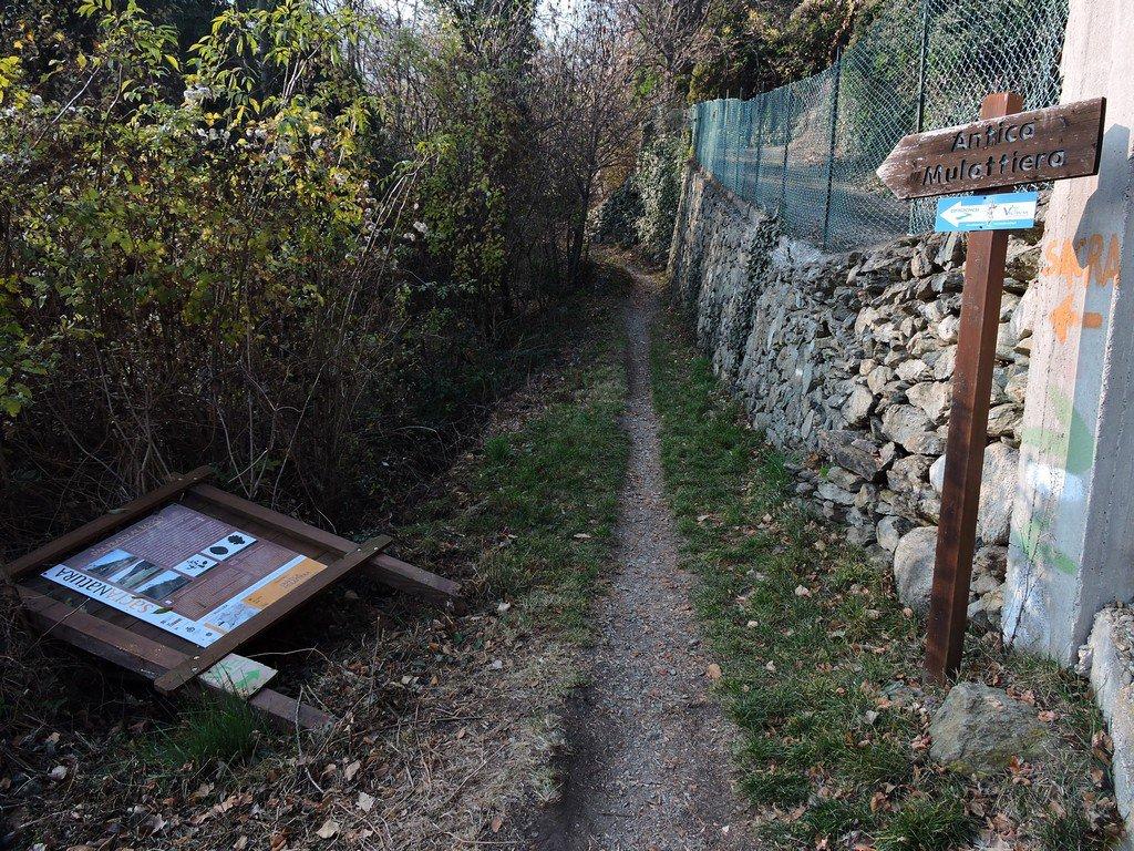 La vecchia mulattiera verso Sant'Ambrogio.