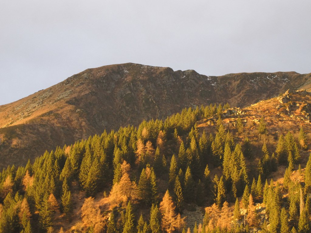 Salendo, Monte Arzola