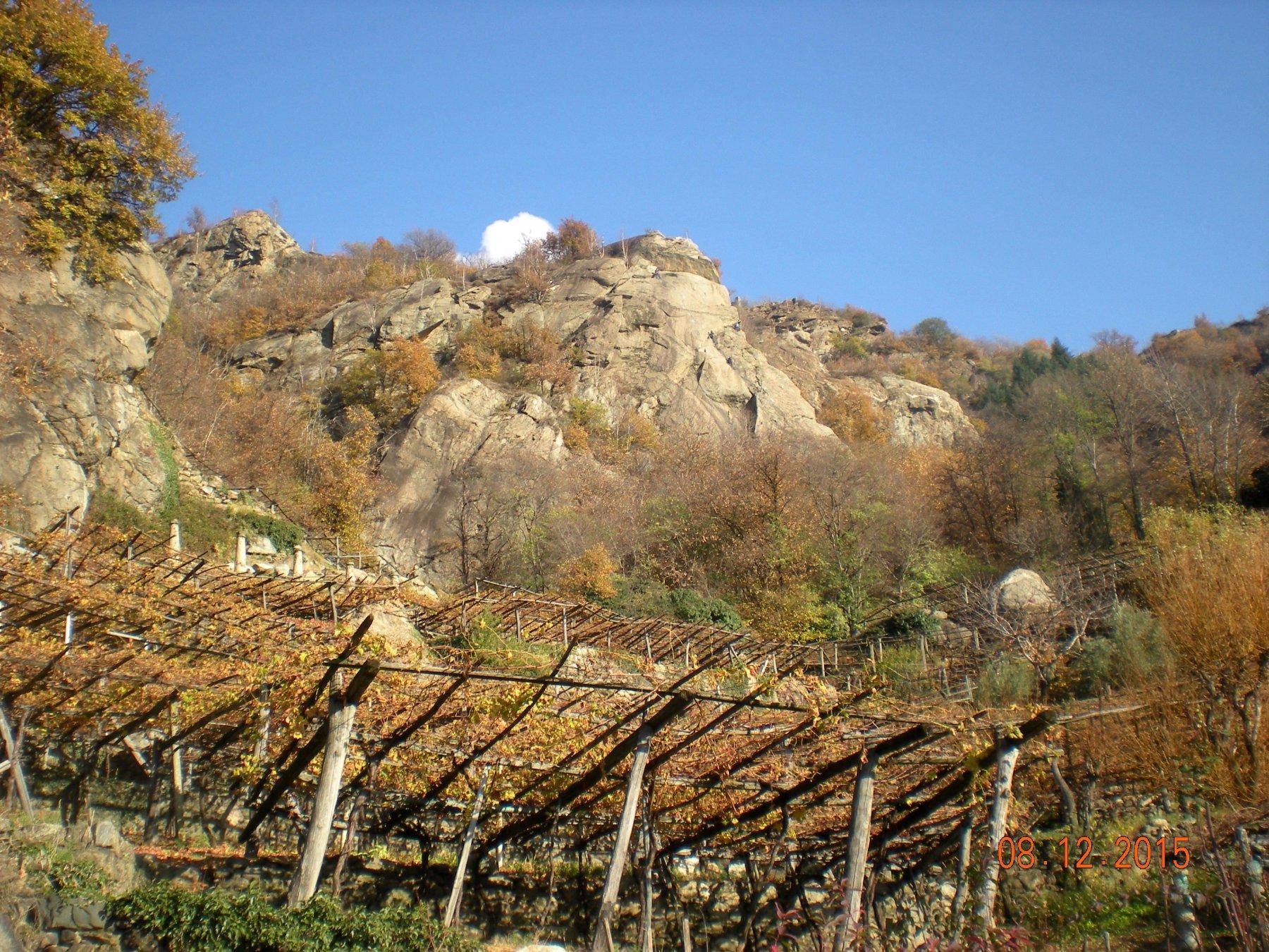 la parete sopra i pregiati vitigni