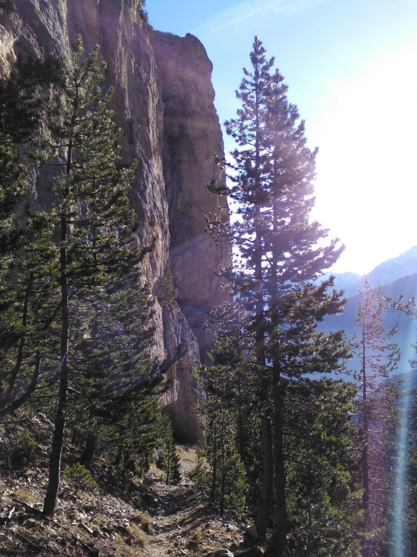 sentiero e pareti nella parte alta