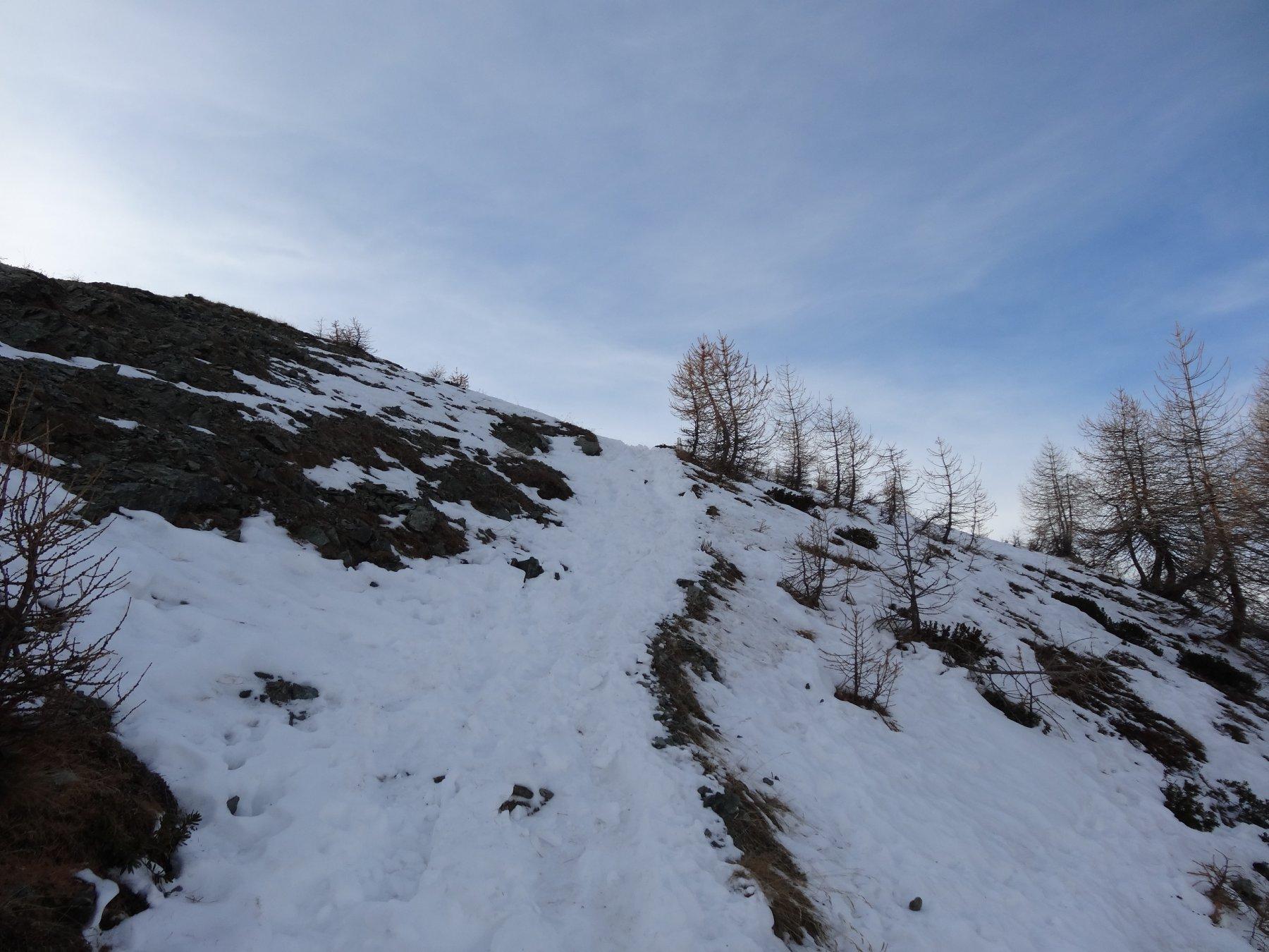 ultimo tratto prima della cima longhede