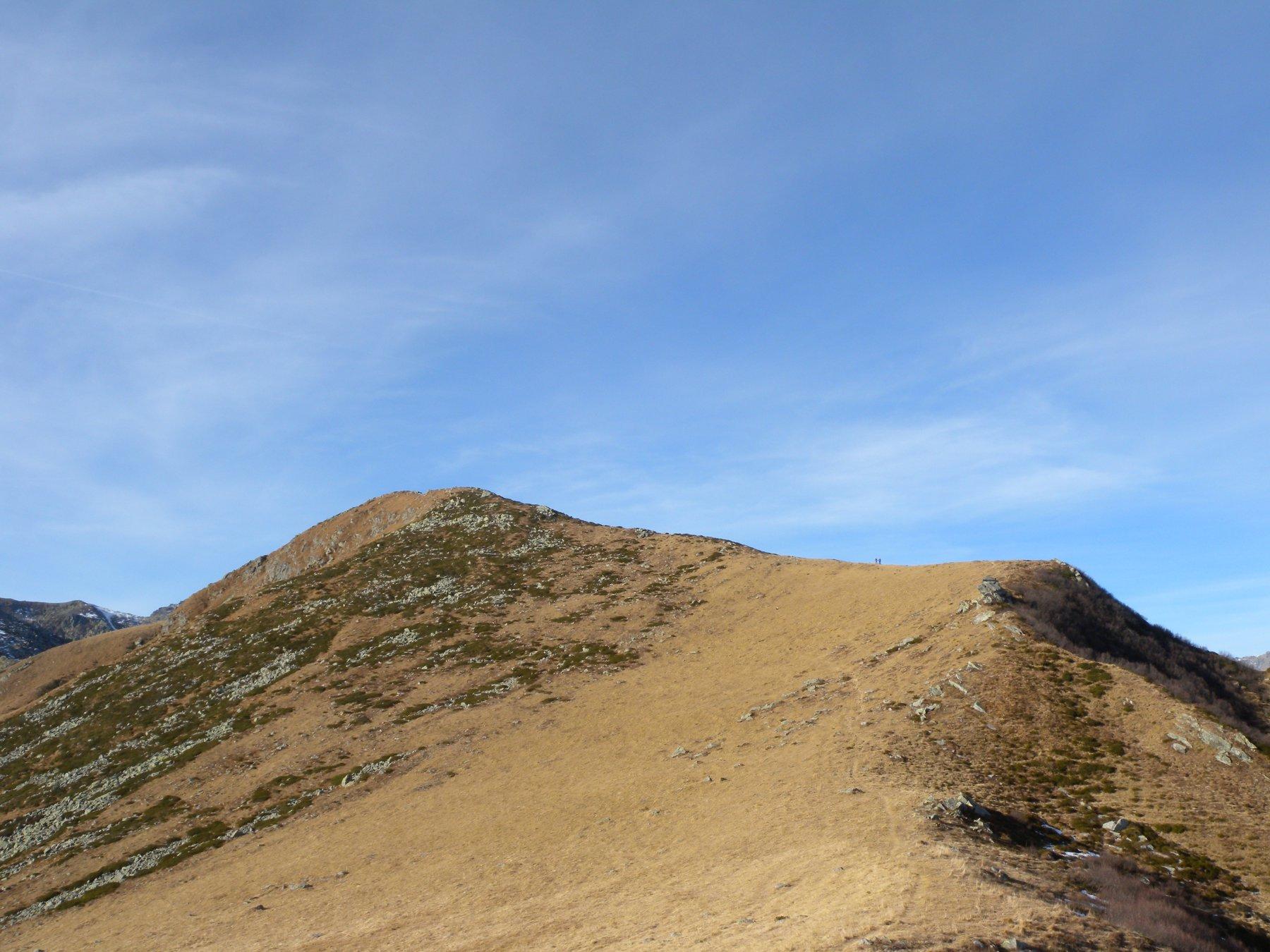 Marmottere (Monte) dall'Alpe Bianca 2015-12-16