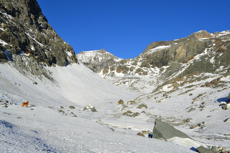 attraversando il Pian Gias con il Monte Collerin sullo sfondo