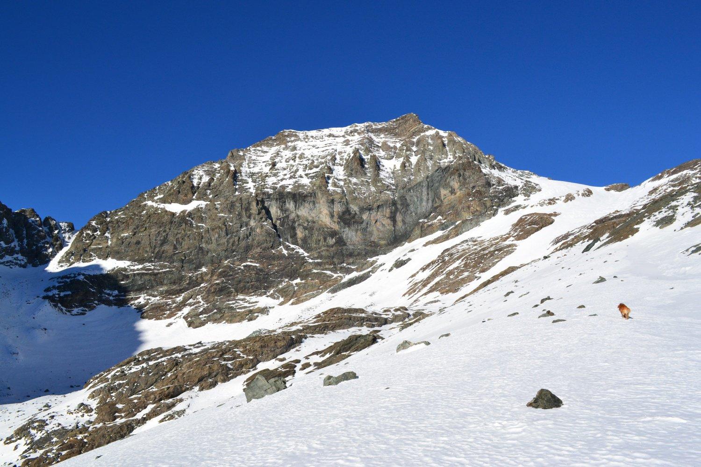 Monte Collerin