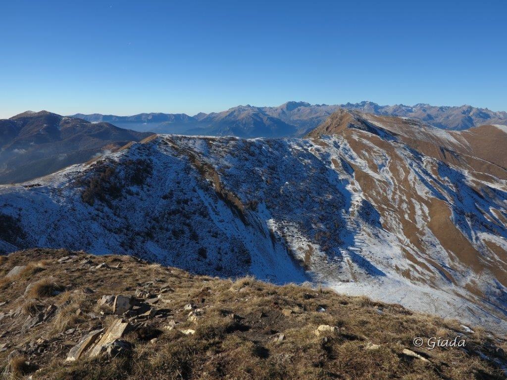 Frontè (Monte) e Cima Garlendada San Bernardo di Mendatica per il Monte Monega 2015-12-19
